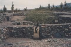 quilmes-tucuman